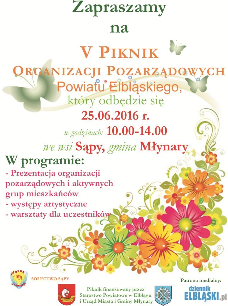 Piknik NGO