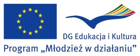młodzież w działaniu_logo